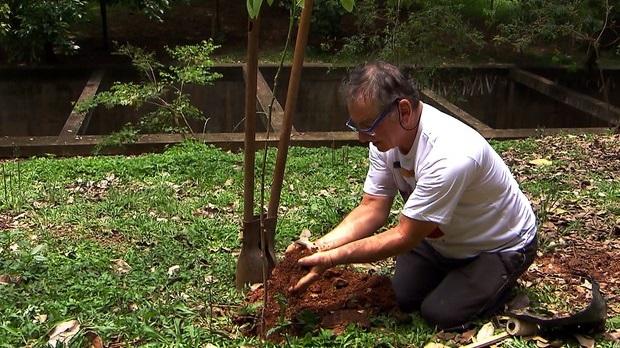 Hélio tem planos para plantar árvores também em ruas e avenidas da zona leste (Arquivo Pessoal)